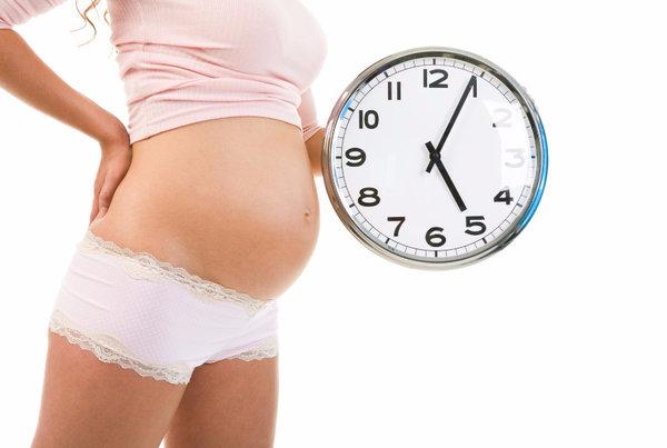Режим для беременных на ранних сроках