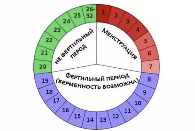 Овуляционная фаза какой день цикла 26