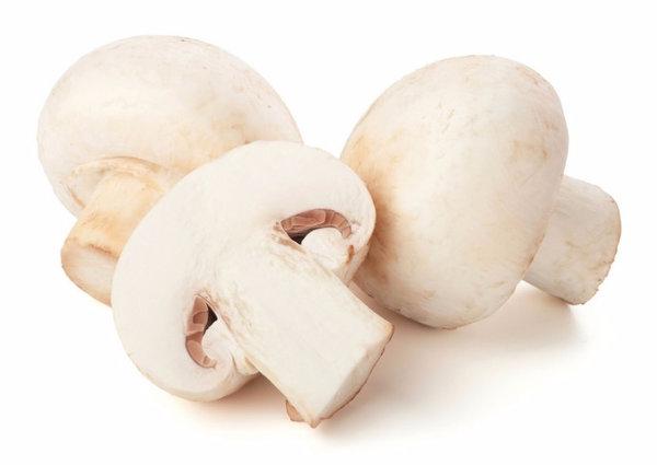 Можно ли беременным есть грибы жареные маринованные сушеные белые шампиньоны опята чайный гриб