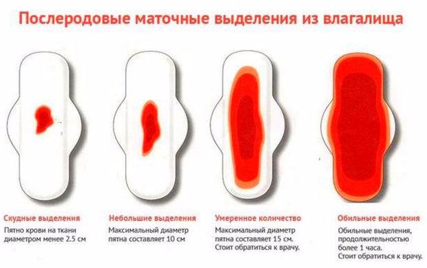 РеалтиМаг от вида крови начинает тошнить вакансии всей России