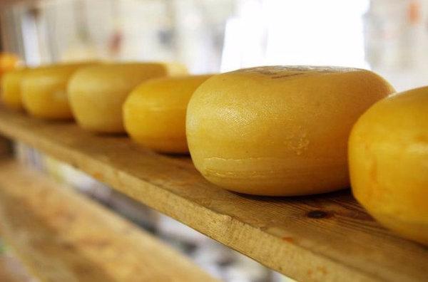 Можно ли беременным творожный сыр